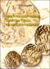 Монеты джучидов: Золотая Орда, татарские ханства
